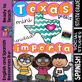 Texas Importa - Hurricane Harvey + Reflection - FREE Mini Spanish Unit