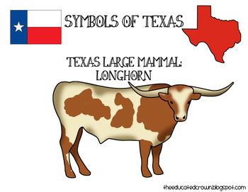 Texas Large Mammal: Longhorn