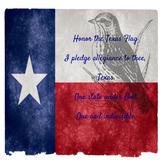 Texas Pledge