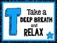 Texas STAAR Motivational Poster Set Blue