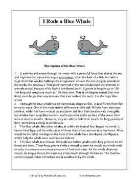 Texas Staar Reading - I Rode a Blue Whale