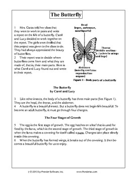 Texas Staar Reading - The Butterfly