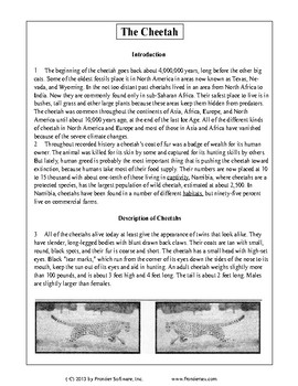 Texas Staar Reading - The Cheetah