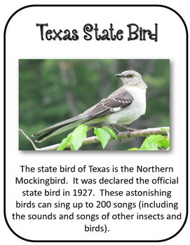 Texas State History Unit.  U.S. State History. 34 Pages