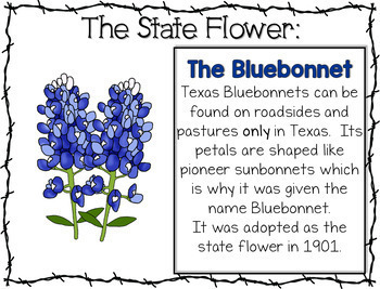 Texas Symbols ~ Booklet and Informational Posters K - 1