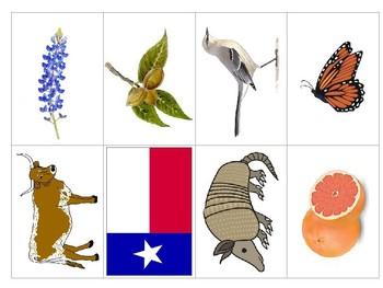 Texas Symbols - Los símbolos de Texas in Spanish & English