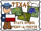 Texas Symbols Posters