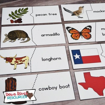 Texas Symbols Puzzles   Matching Puzzles for Texas Patriotic & Selected Symbols
