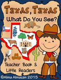 Texas Texas What Do You See Little Reader & Big Book