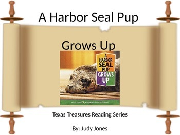 Texas Treasures: A Harbor Seal Pup Grows Up (PowerPoint)