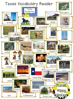 Texas ~ Vocabulary cards/header and Reader