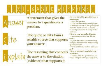 Text-Based Response Guidance Sheet