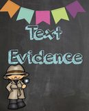 Text Evidence posters