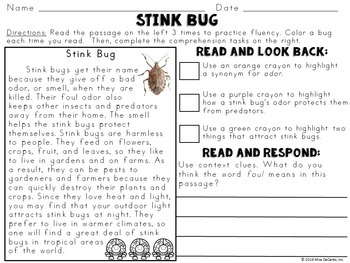 Text Evidence Reading Passages INTERESTING INSECTS Edition
