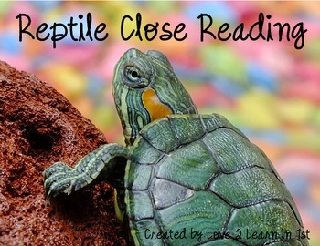 Text Evidence (Reptiles)