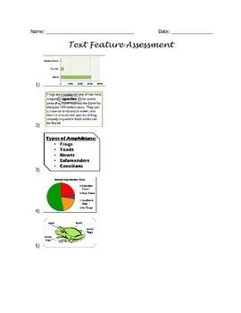Text Feature Assessment