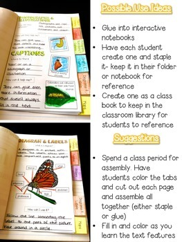 Text Feature Flip-Book: Monarch Themed