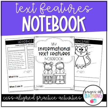 Text Feature Notebook Freebie