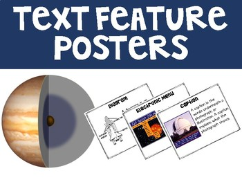 Text Feature Posters & Anchor Charts