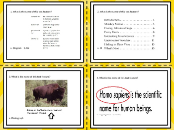 Text Feature Task Cards-20 Cards