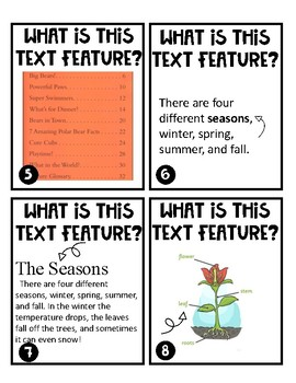 Text Feature Task Cards ****Freebie****