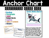 Text Features Anchor Chart