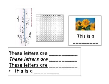 Text Features Interactive Notebook
