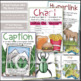 Student Text Features Mini Flip Books and Classroom Posters Set