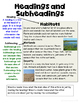 Text Features Posters and Activities