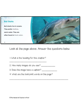 Text Features Quiz 2nd Grade *FREE*