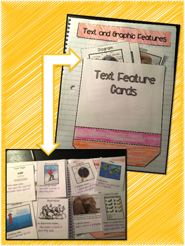 Text & Graphic Features Interactive Notebook