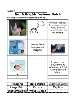 Text & Graphic Features Match