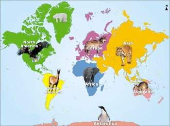 Text Set for Landforms, Continents, and Maps
