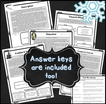 Winter Activities ~ Text Structure ~ Reading Comprehension