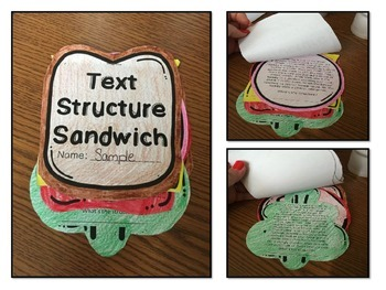 Text Structure Craftivity