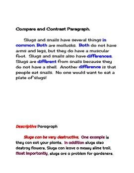 Text Structure, Five types of paragraphs nonfiction project