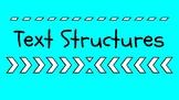 Text Structure Google Slides Presentation