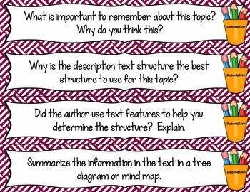 Text Structure Question Fans