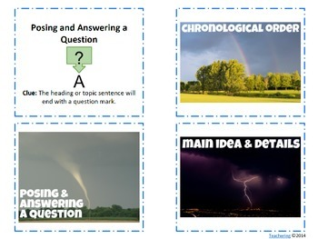 Text Structure Task Cards {with PHOTOS for differentiation}