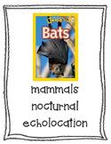 Text Talk Bats
