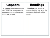 Text and Graphic Features Poster/Activity