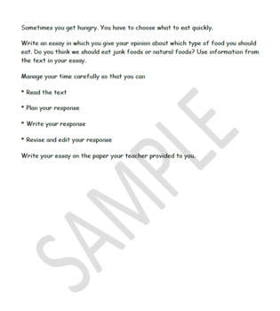 Text based opinion writing prompt
