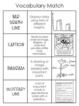 Text feature vocabulary words