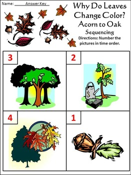 Thanksgiving Activities: Why Do Leaves Change Color in the Fall Activity - Color