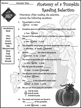 Thanksgiving Activities: Anatomy of a Pumpkin Activity Packet - B/W