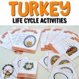 Thanksgiving Activities: Turkey life cycle printables