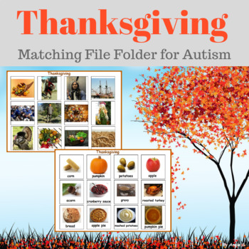 Thanksgiving Activity - Autism Matching File Folders, Than