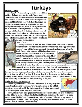 Thanksgiving Compare and Contrast Reading Thanksgiving Reading Graphic Organizer