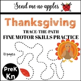 Thanksgiving Fine Motor Practice - Trace the Path