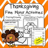Thanksgiving Fine Motor Preschool Activities